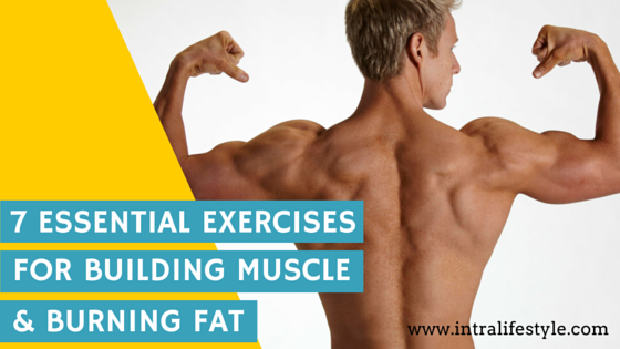 Fat burning muscle building exercises
